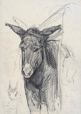 Edouard Morerod, peintre: Âne, étude pour La Copla , fusain et estompe, vers 1913.